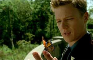 KINGS-butterfly.jpg
