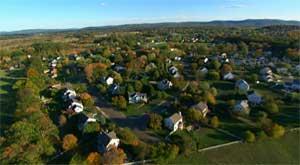 lyme-trees-suburbia.jpg