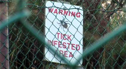 lyme-warning-tick-sign-TOP.jpg