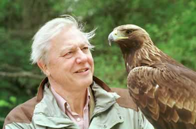 Attenborough-photo.jpg