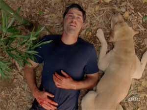 Les Gardiens de l'Île Lost-jack-bamboo-dog