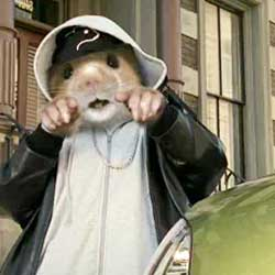 KIA-hamster.jpg