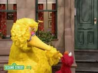 big-bird-elmo.jpg