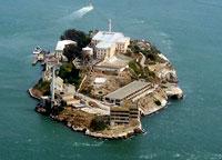 alcatraz_island-fox.jpg