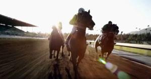 luck-horses.jpg