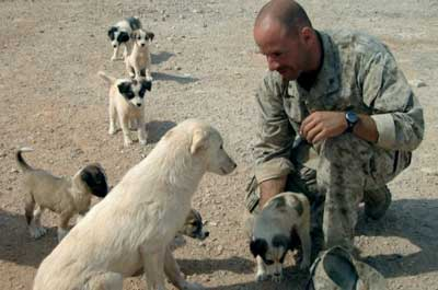 No-Dog-Left-Behind-film-Iraq.jpg