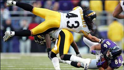 steelers-troy-polamalu.jpg