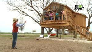 Treehouse Masters Doesn T Get Off The Ground